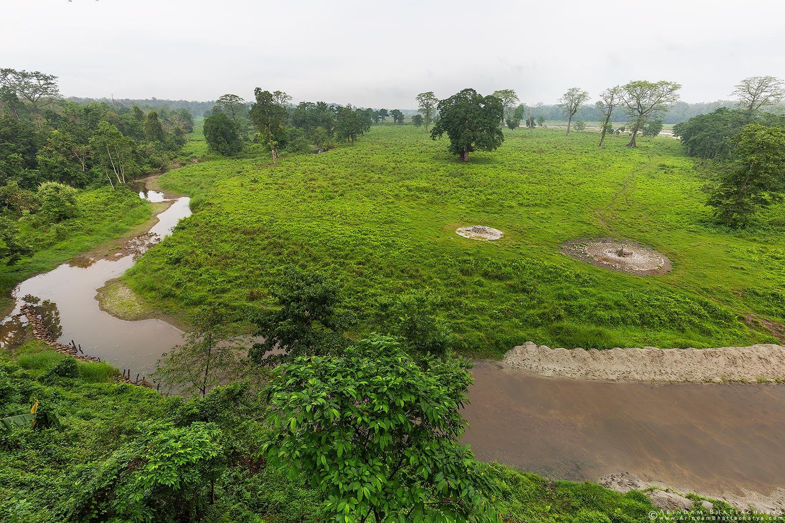 Gorumara National park landscape Dooars West Bengal India
