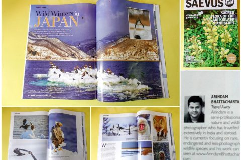 Arindam Bhattacharya Saevus Wildlife publication