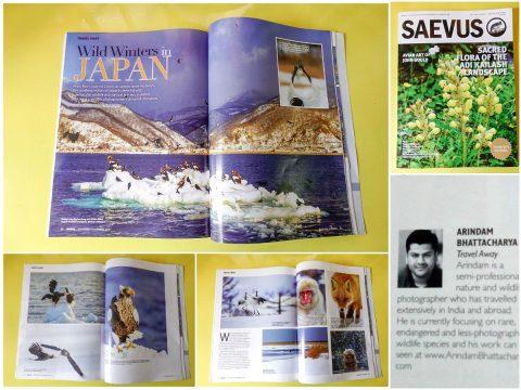 Arindam Bhattacharya Saevus Wildlife publication